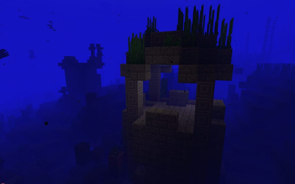 Ocean Ruin in this Java Edition Seed